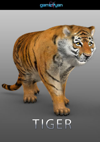 3d-tiger-animal-character-modeling